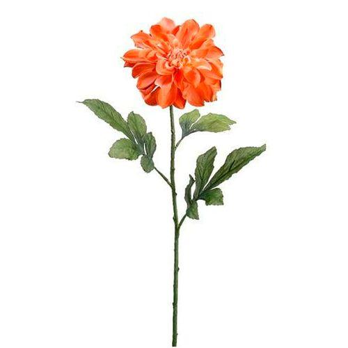 """Dalia color coral 29"""""""