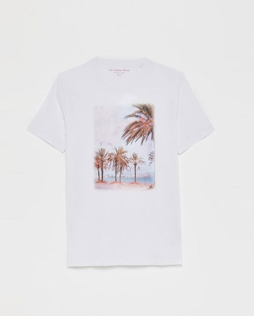 Camiseta photo 4