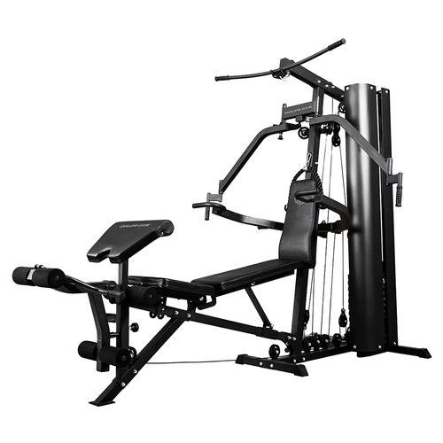 Mini gym elite 2.0 home golds gym